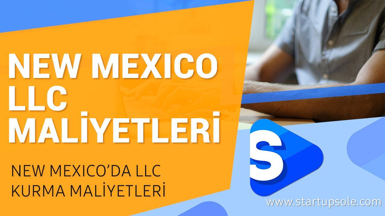 New Mexico'da Şirket Kurmak ve Maliyetleri