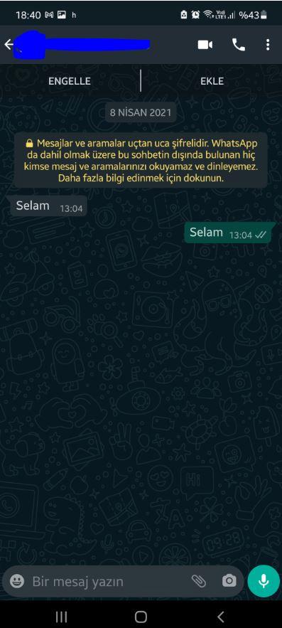 whatsapp business kurumsal 2 Sanal Telefon Numarası ile Whatsapp Business Kullanma